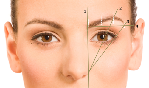 Image result for Brow Shape