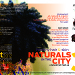 NITC3 – The Flyer