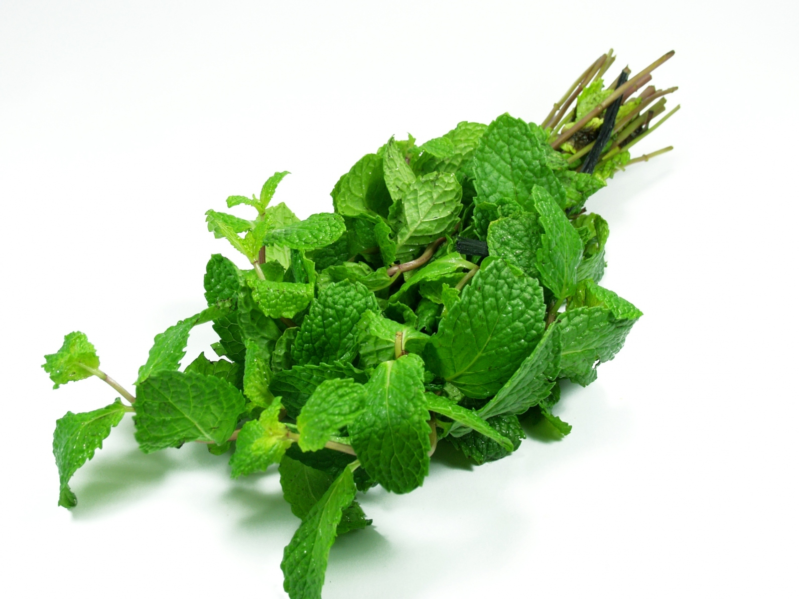 Natural Peppermint Oil Benefits