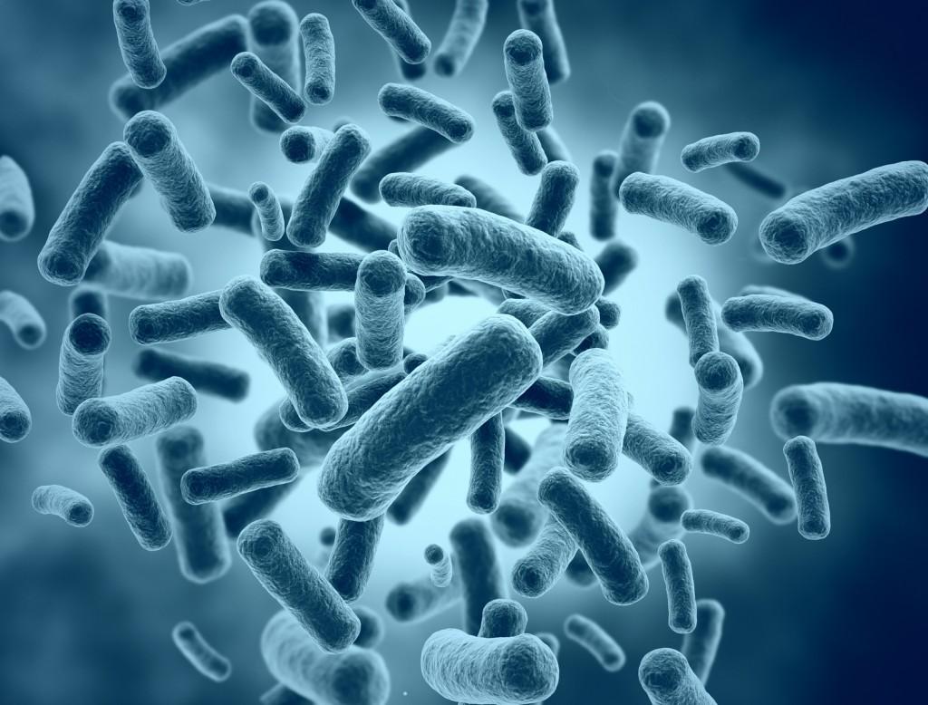nigeria lagos abuja bacteria natural hair skin products cosmetic preservative