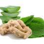 Ginger, Peppermint and Aloe Vera