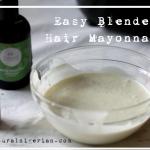 Easy Blender Hair Mayonnaise